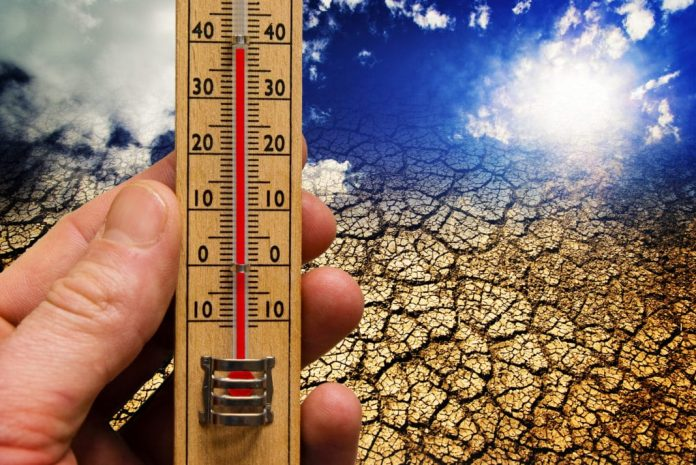 Weather, climate, vaccinations, banks and money