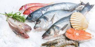 gst-rate-for-fish-and-fish-products
