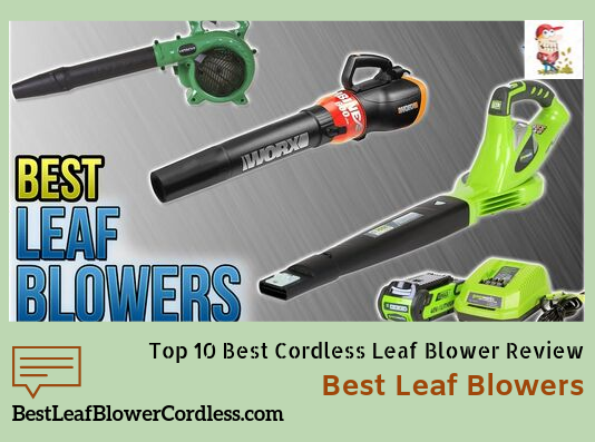 Top 10 Best Cordless Leaf Blower Review