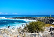 Incredible places for the perfect Galapagos land tour