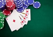 Have You Considered These While Choosing Online Gambling Software?