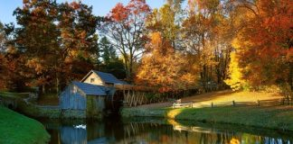 Reasons To Visit Virginia In The Fall